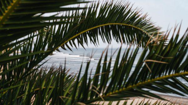 ChicamaBoutiqueHotel_Puerto_Malabrigo_MatsKahlstrom_Peru